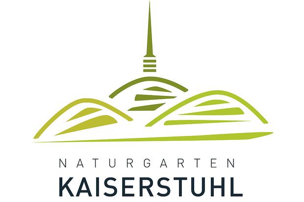 Logo NGK 2020
