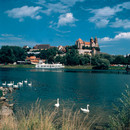 Blick vom Rhein